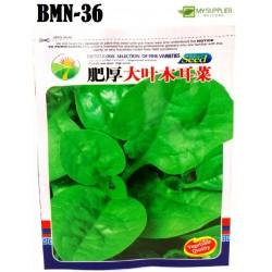 Malabar spinach seeds