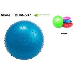 46g+- Massage Inflatable Beach Ball 19cm
