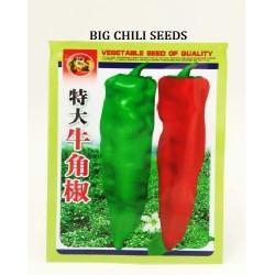 big chili seeds