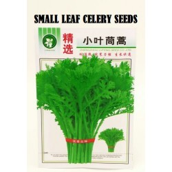 small leaf celery seeds