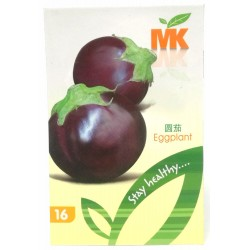 16 eggplant seeds*