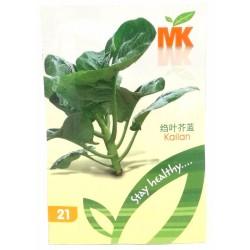 21 kailan seeds*